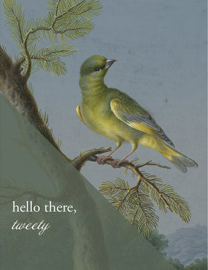 HELLO TWEETY - Modern Masters Greeting Card - Sylvan Gate Design