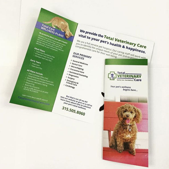 Trifold brochure printed for veterinary care