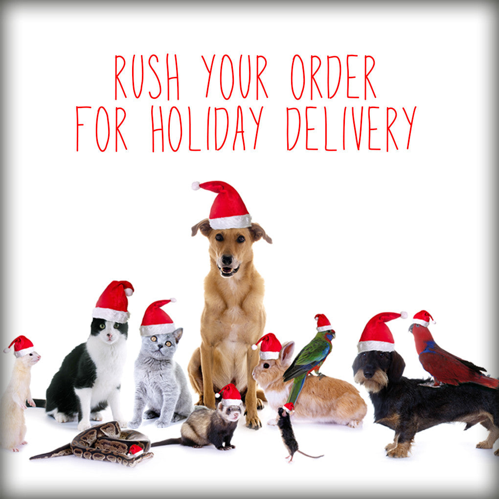 RUSH FEE-For orders placed in December 2017
