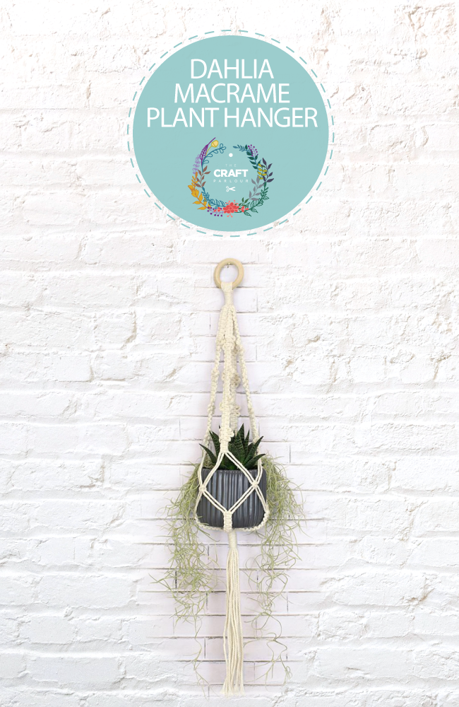 Dahlia macrame plant hanger with pot and plant