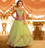 BALL GOWN INDIA PREMIUM FRESH GREEN STONE WORK NET FULL LENGTH