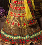 Pakistani style Bridal Lehenga choli online shopping in India and worldwide