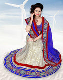 indian lehenga choli designs