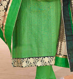 Stylish Green Punjabi dress for women