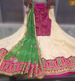 STYLISH BAZAAR LOVELY CREAM COLOR LEAF FLOWER DESIGNER EMBROIDERY SOFT GEORGETTE LEHENGHA AND CHOLI SAME DUPATTA WORK SB011