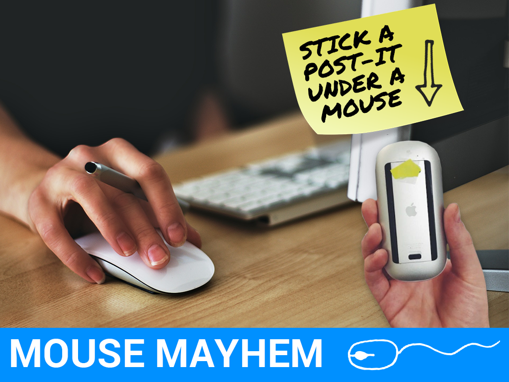 Mouse Mayhem Prank