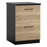 Vanta 2 Drawer Filing Cabinet
