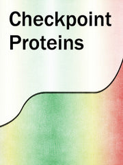 Checkpoint Proteins