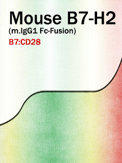 Mouse B7-H2 (m.IgG1 Fc-Fusion)