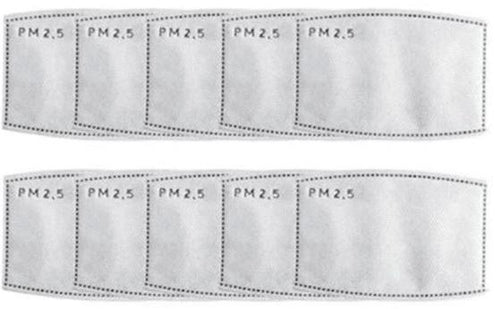 PM2.5 Disposable Filters (10 per pack)