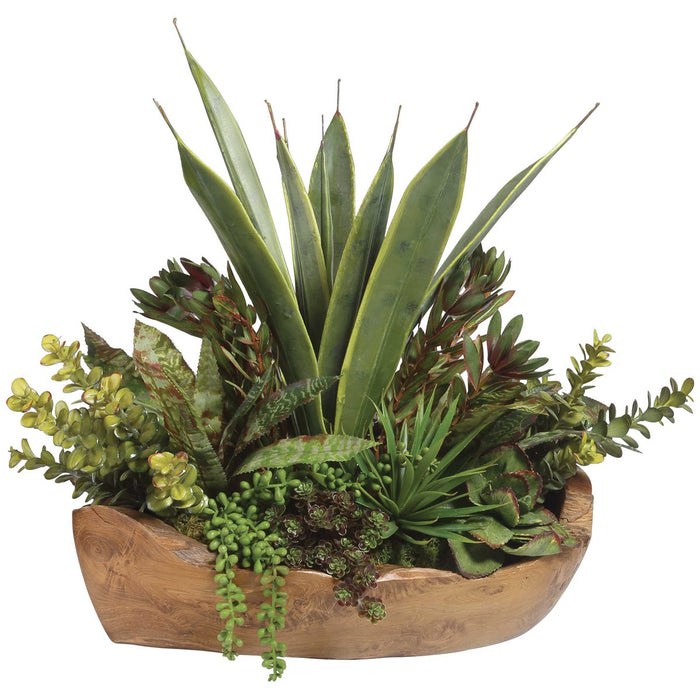 Uttermost Salar Succulents In Teak Bowl