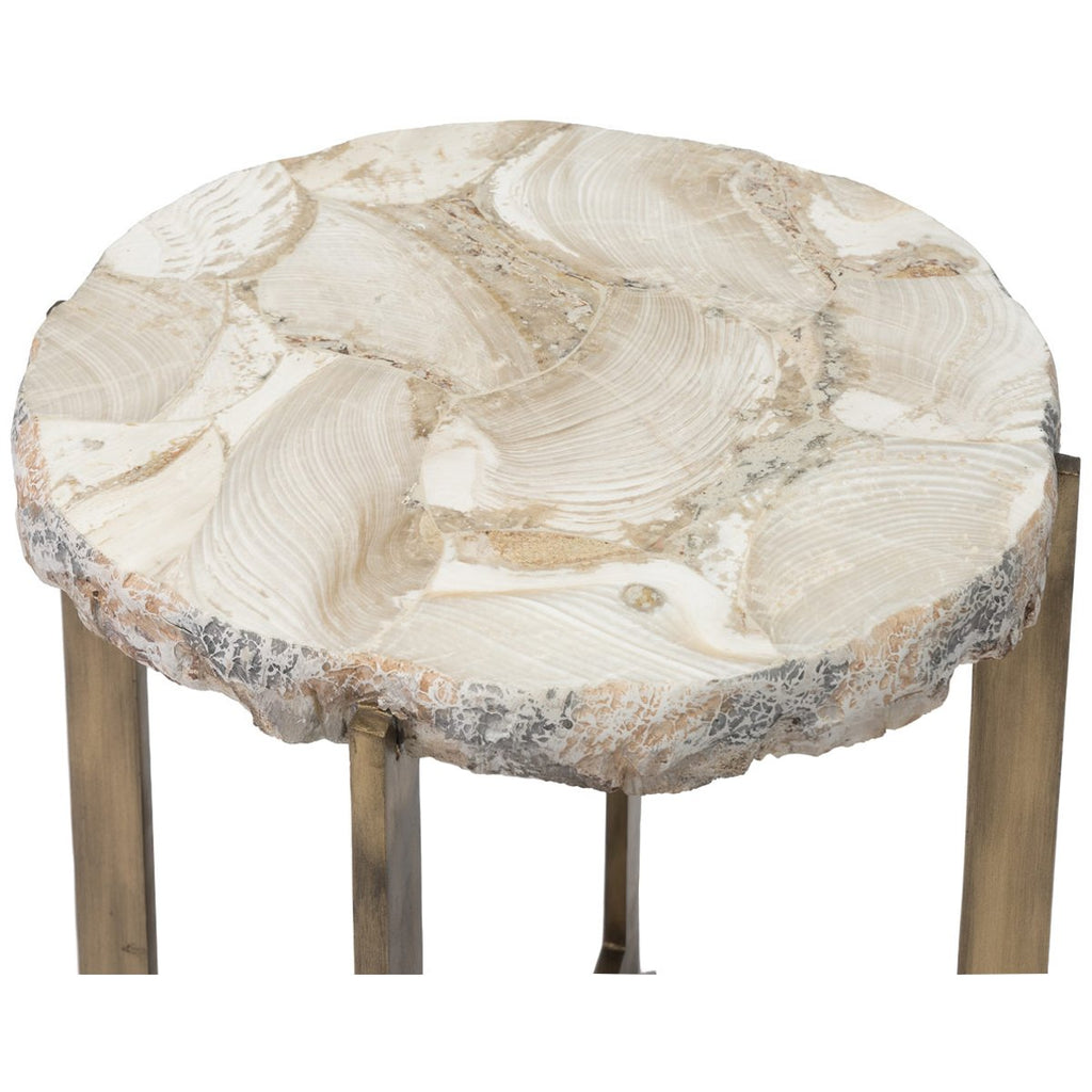 Palecek Durham Fossilized Clam Side Table
