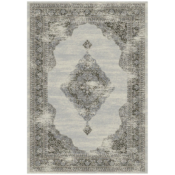 Dynamic Rugs Ancient Garden 57557-9696 Silver/Grey Rug
