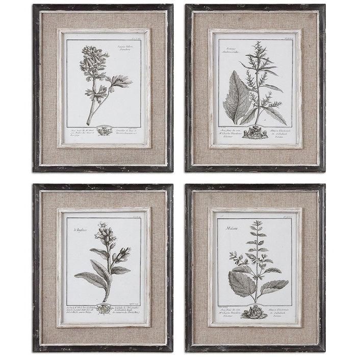 Uttermost Casual Grey Study Framed Art Set of 4 32510