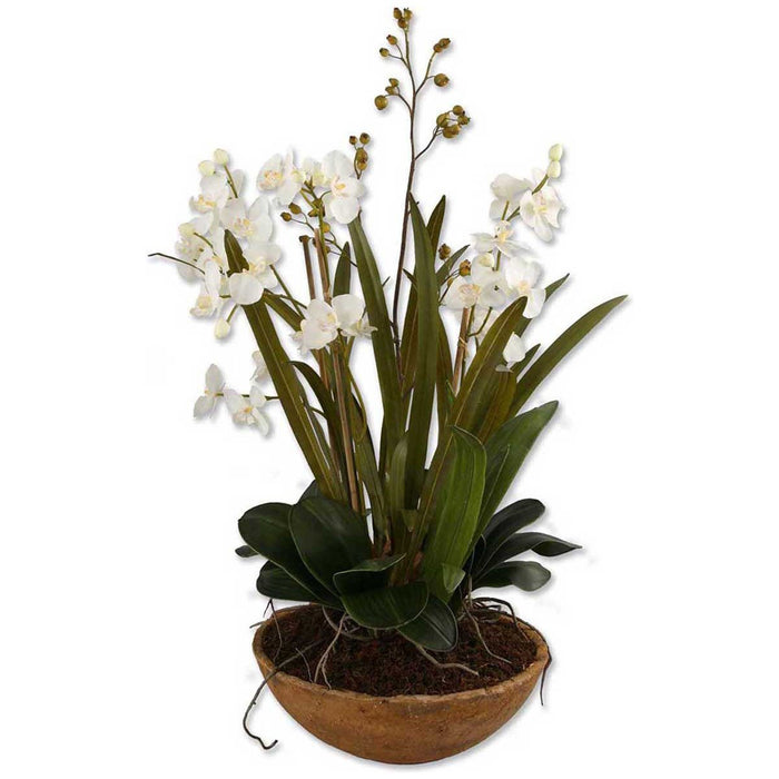 Uttermost Moth Orchid Planter 60039