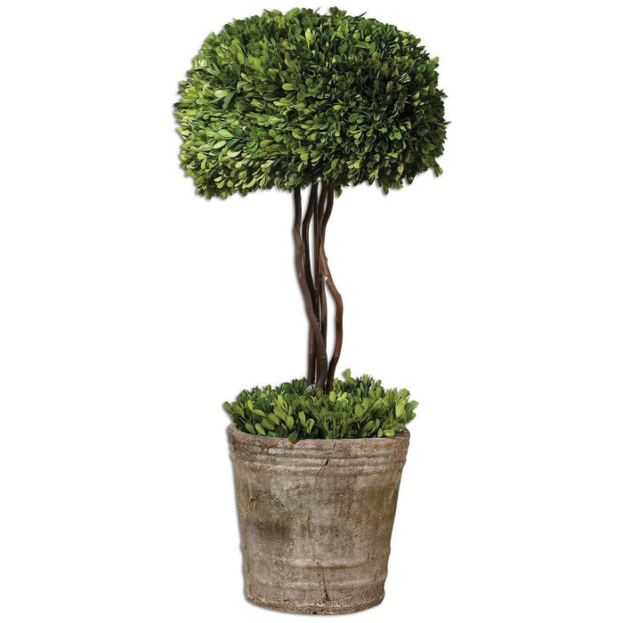 Uttermost Tree Topiary Preserved Boxwood 60095