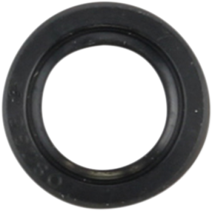 Triumph shift shaft seal