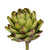 ARTICHOKE (set of 12)