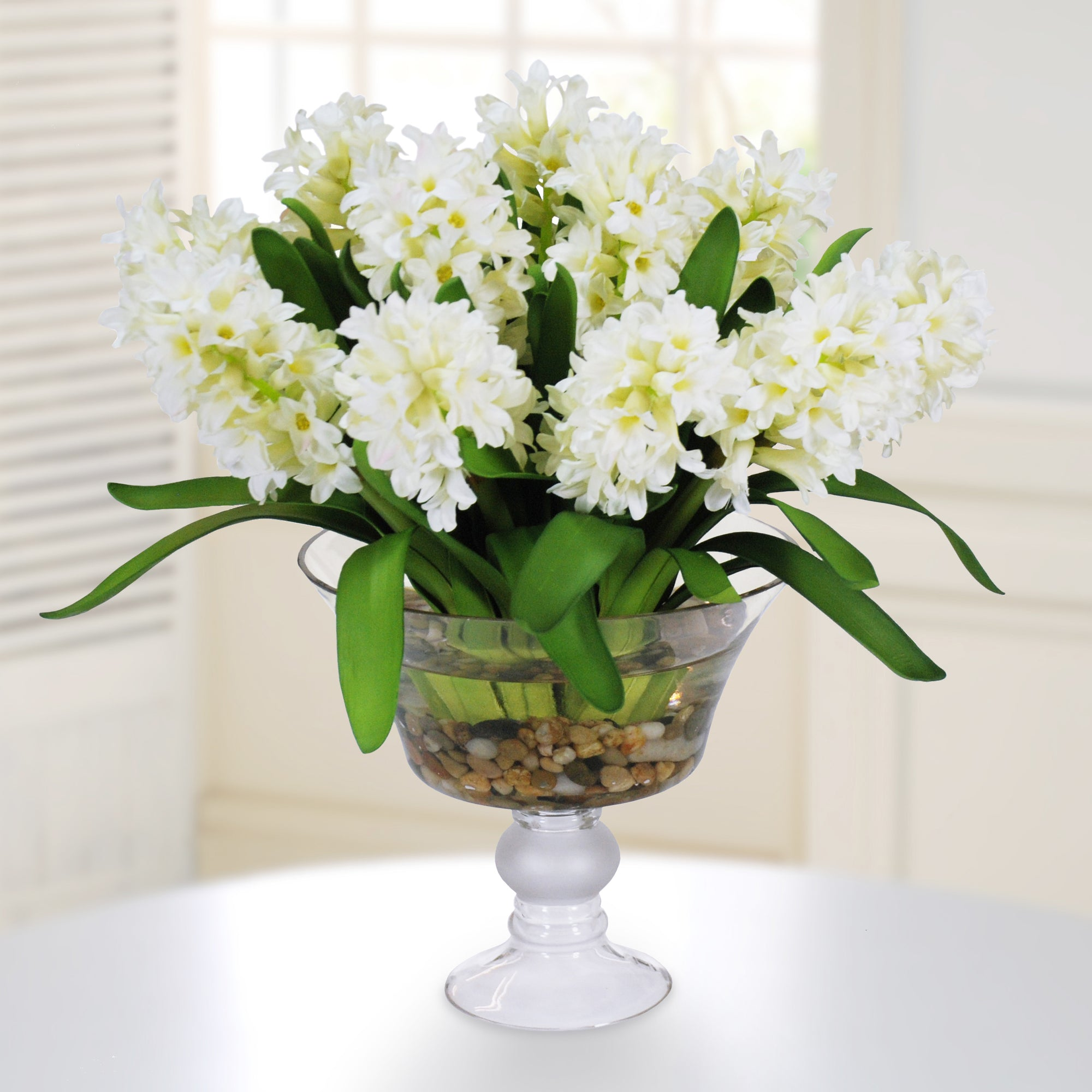 HYACINTH IN GLASS W/ ROCKS (DP680-WH)