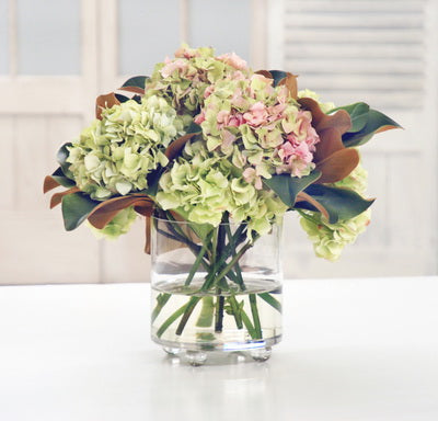HYDRANGEA IN CYLINDER FOOTED GLASS 17""
