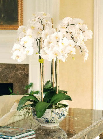 PHALAENOPSIS IN ROSE TRELLIS BOWL (DP766-WH) - Winward Home faux floral arrangements
