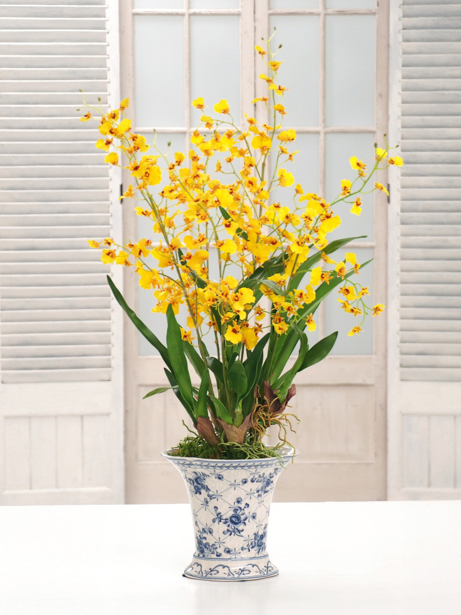 ONCIDIUM ORCHID CHINOISERIE (DP768-YL) - Winward Home faux floral arrangements