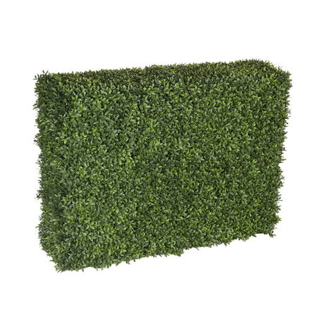 BOXWOOD HEDGE 28""