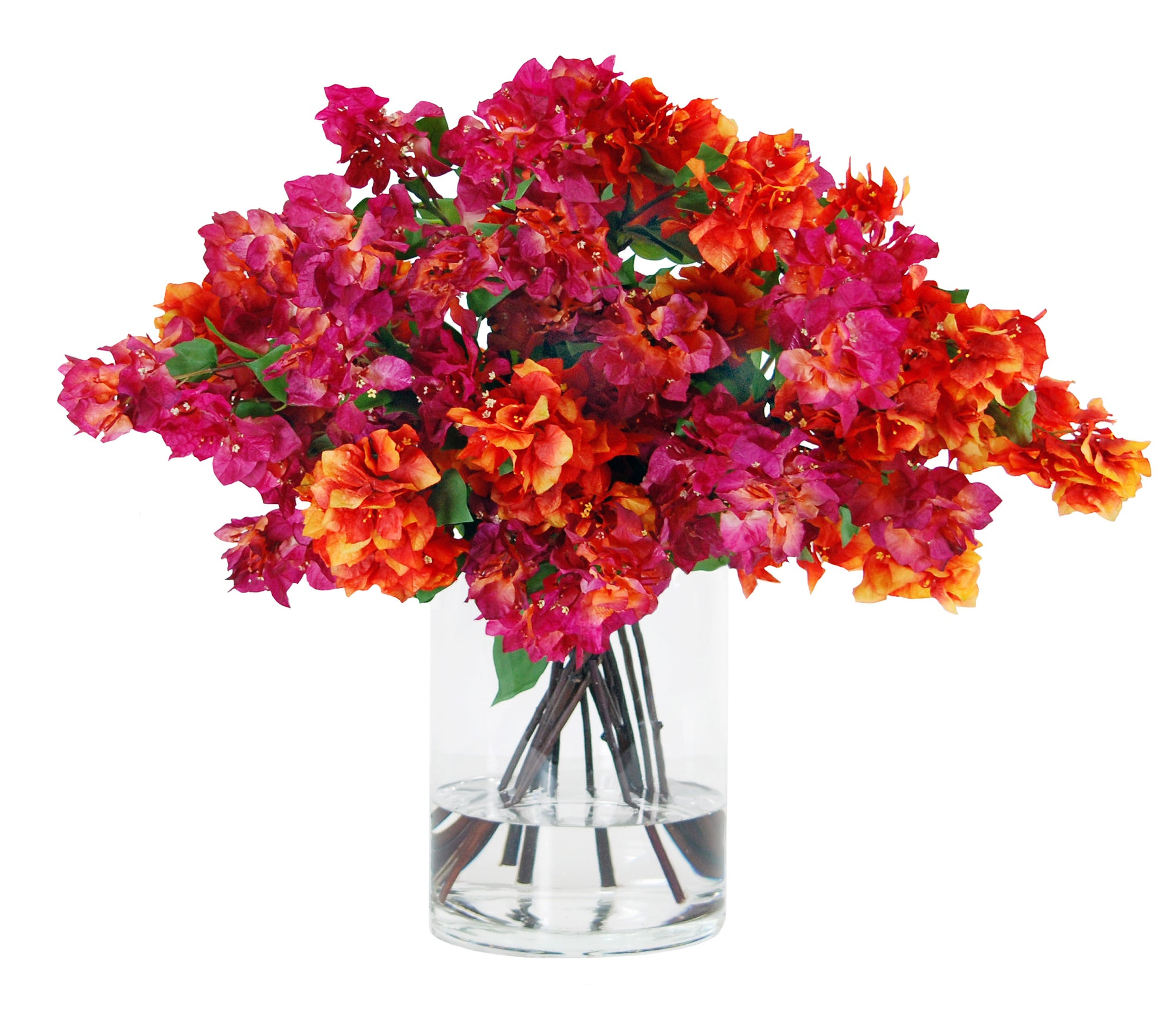 BOUGAINVILLEA IN VASE 34""