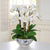 ORCHID IN ROSE TRELLIS BOWL (WHD054-WH)