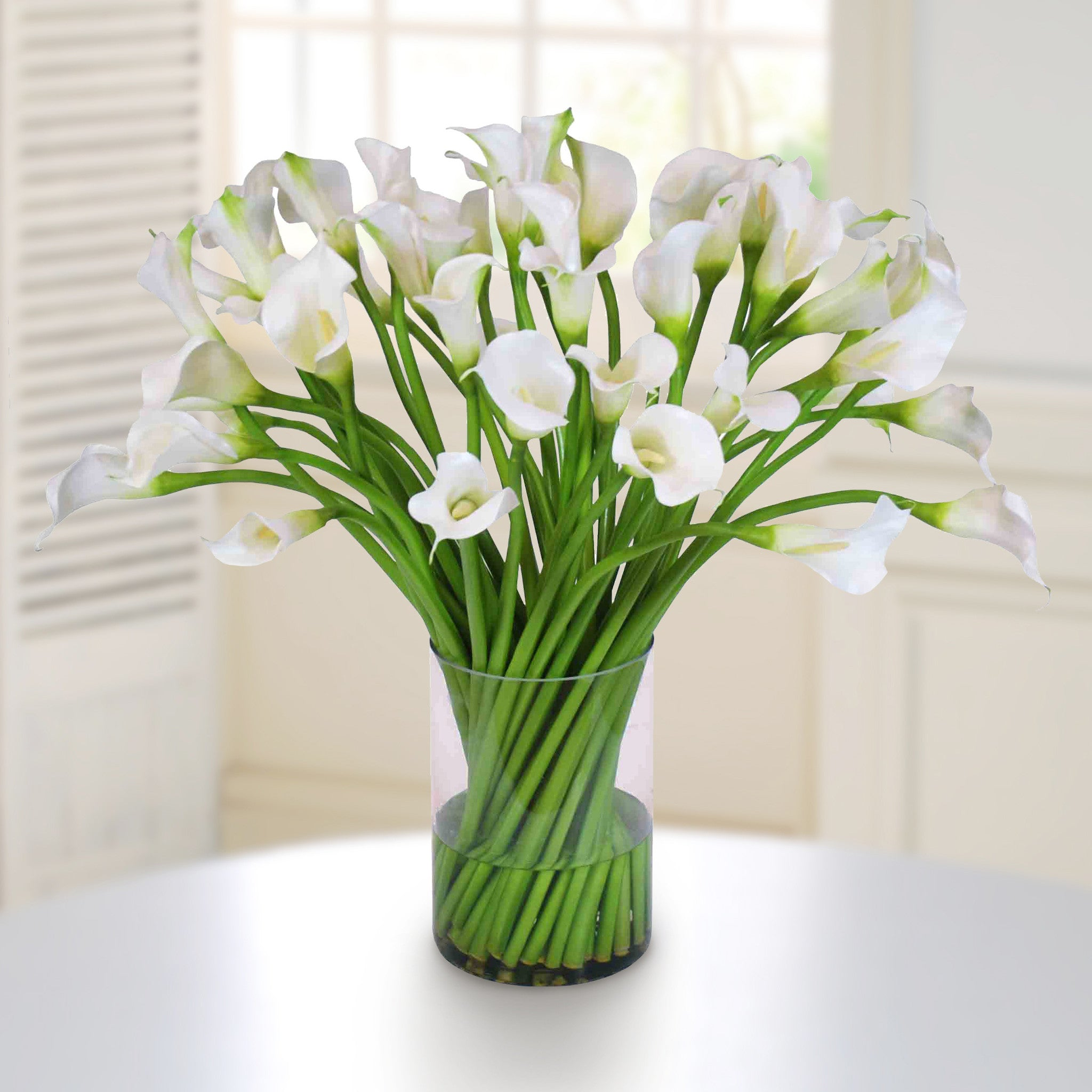 Hydrangeas in footed glass winward home finest permanent botanicals calla lily in clear cylinder vase whd083 ww winward home faux floral reviewsmspy