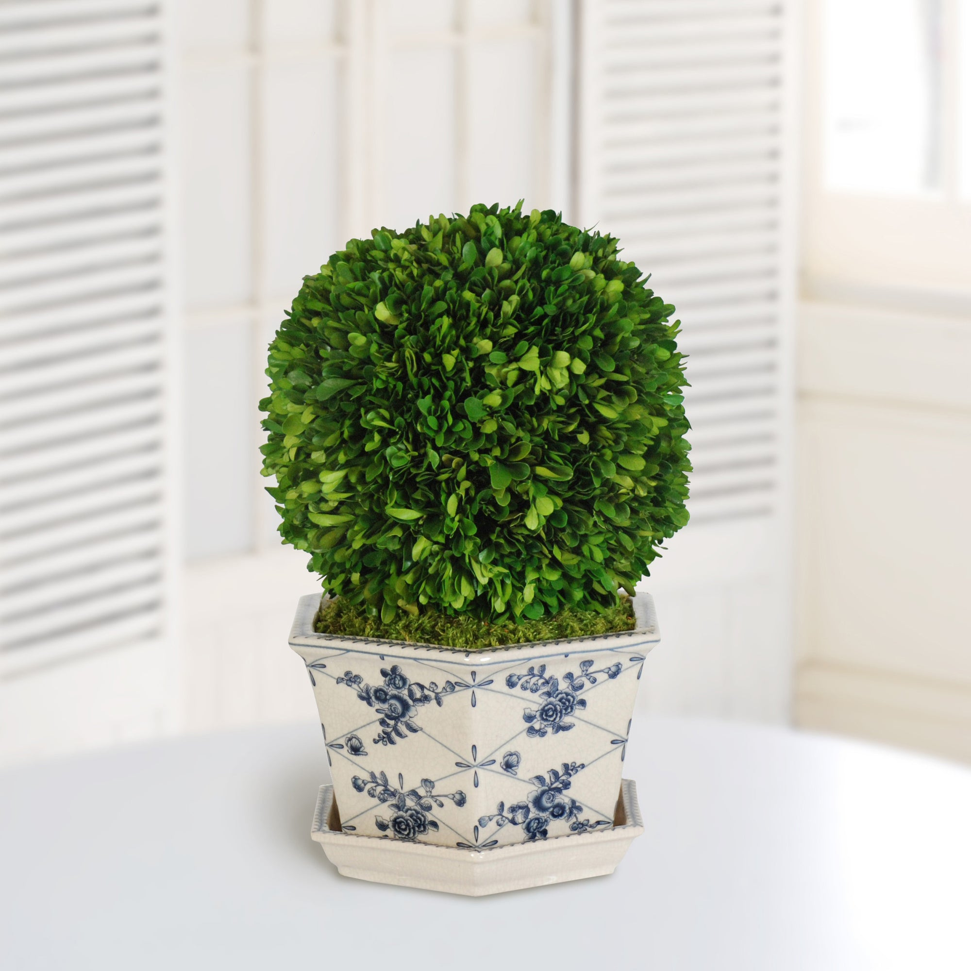 BOXWOOD BALL IN POT CACHE (WHD096.GR) - Winward Home faux floral arrangements