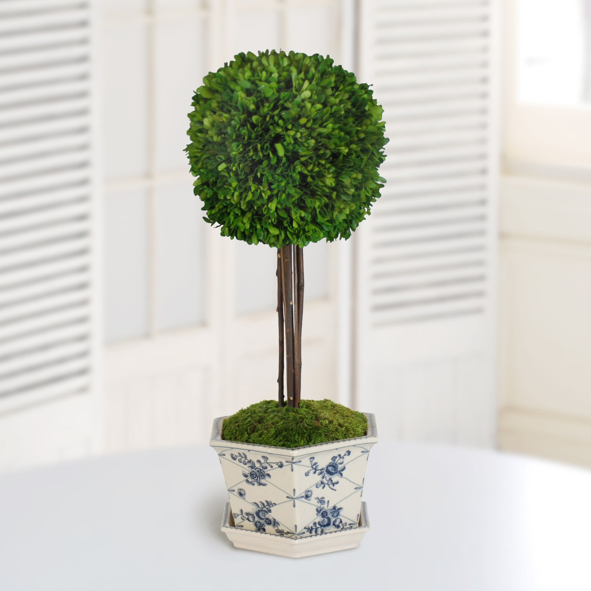 BOXWOOD BALL IN POT CACHE (WHD097-GR) - Winward Home faux floral arrangements