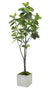 FIDDLE LEAF FIG TREE LARGE (WHD113-GR) - Winward Home faux floral arrangements