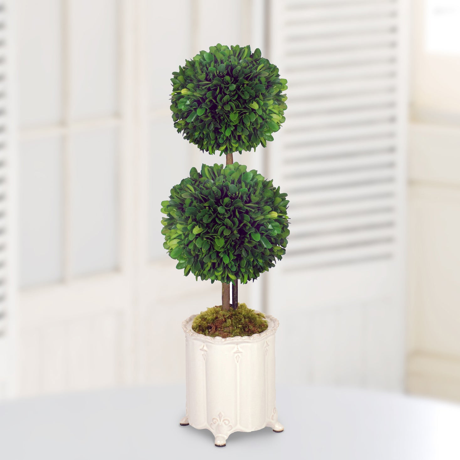 DOUBLE BALL TOPIARY IN CANISTER VASE (WHD118-GR)