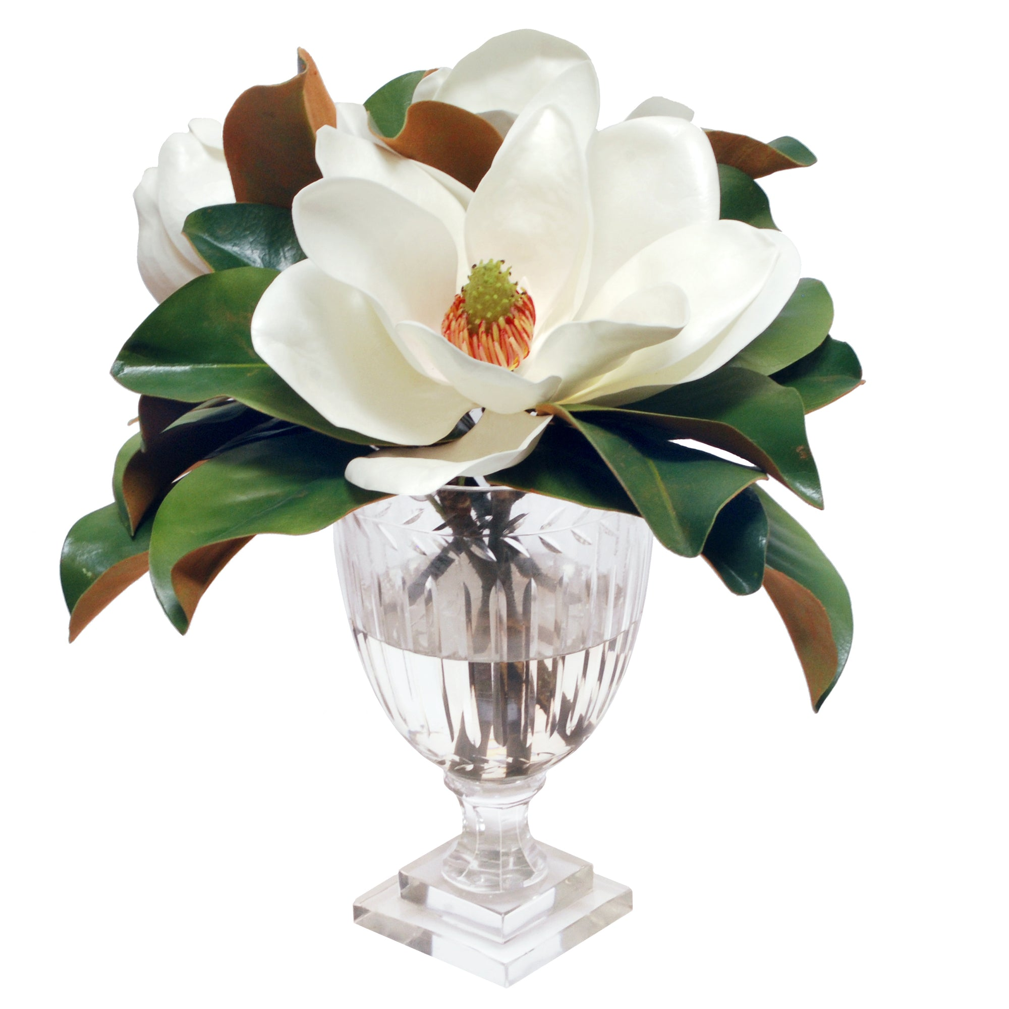 MAGNOLIA IN LEAF CUT VASE (WHD124-WH)