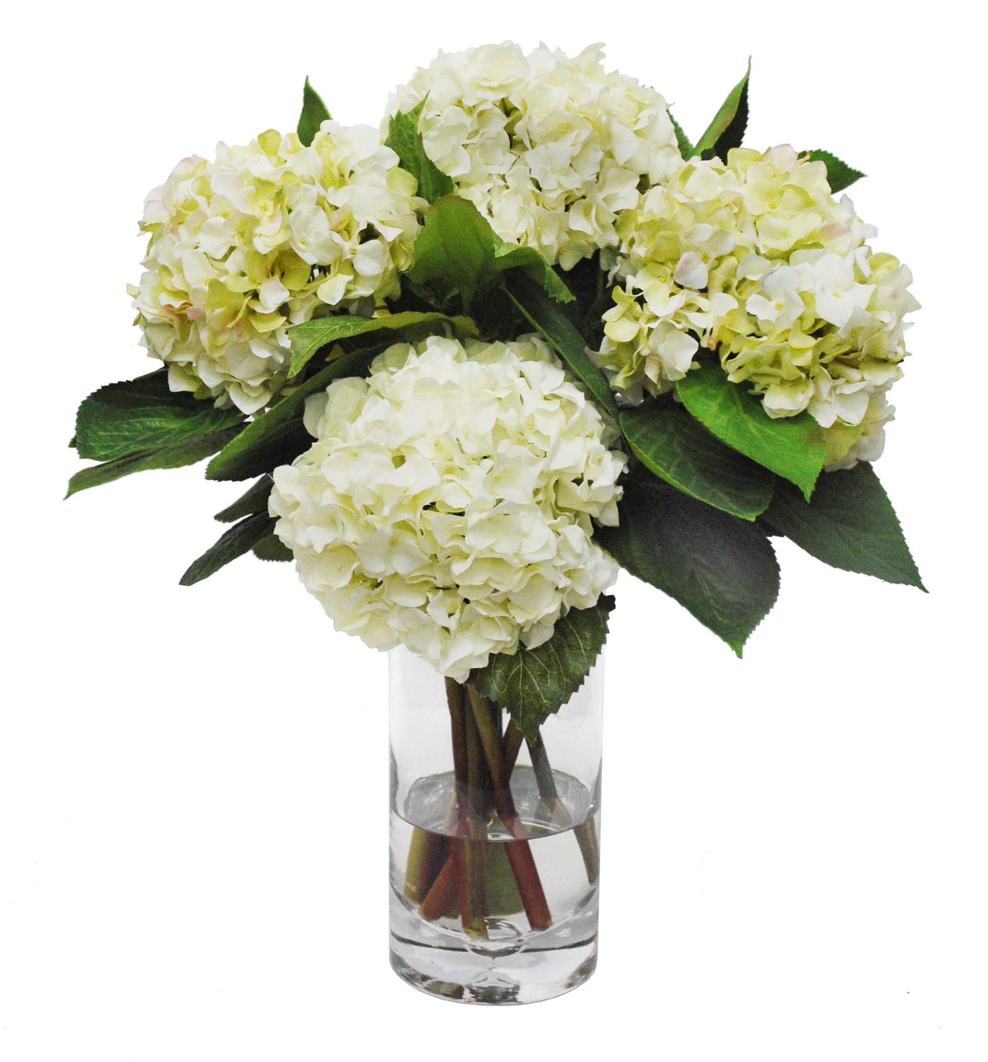 HYDRANGEA IN GLASS VASE (WHD164-WHGR)