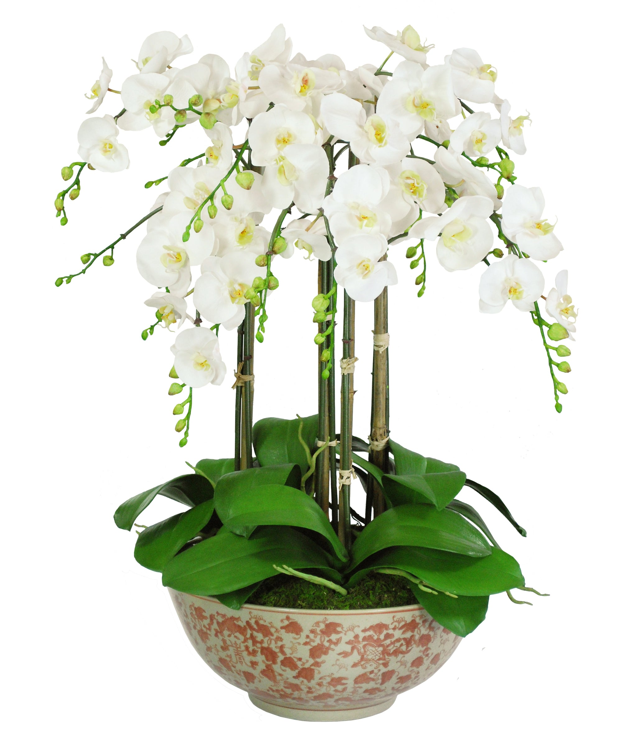 ORCHID IN LONG LIFE BOWL (WHD183-WH)