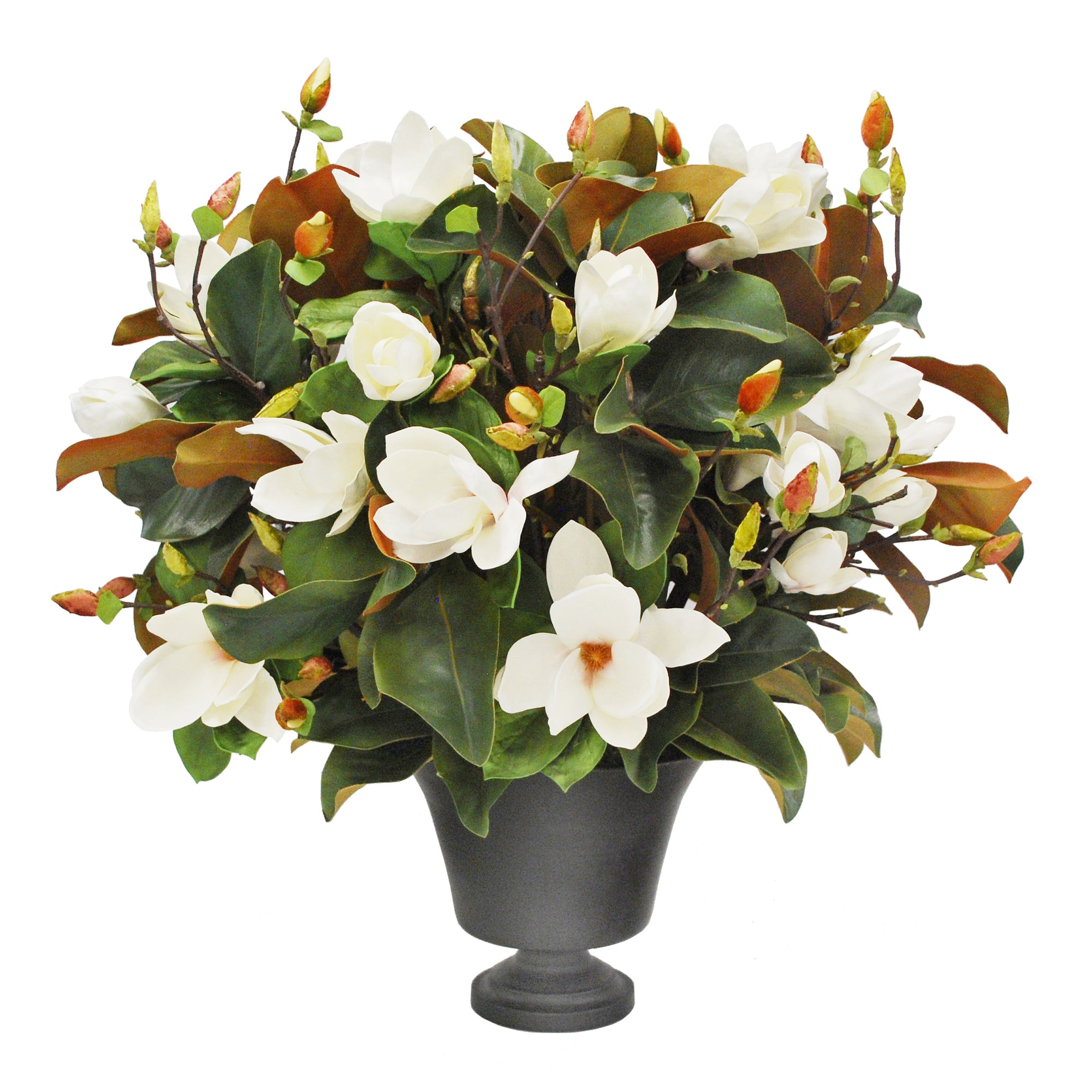 TREE MAGNOLIA IN BLACK PLANTER (WHD248-WH)