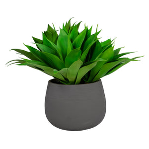 ALOE IN STONECAST PLANTER 25""