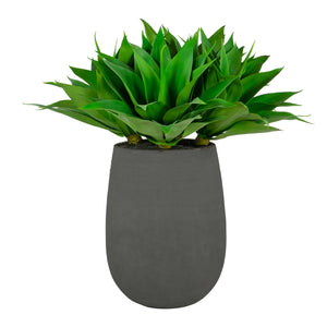 ALOE IN STONECAST PLANTER 35""