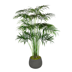 KENTIA PALM IN STONECAST PLANTER 7'