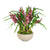 ORCHID CYMBIDIUM IN BOWL (WHD306-PUGR)