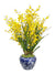 Yellow dancing orchids in white and blue vase