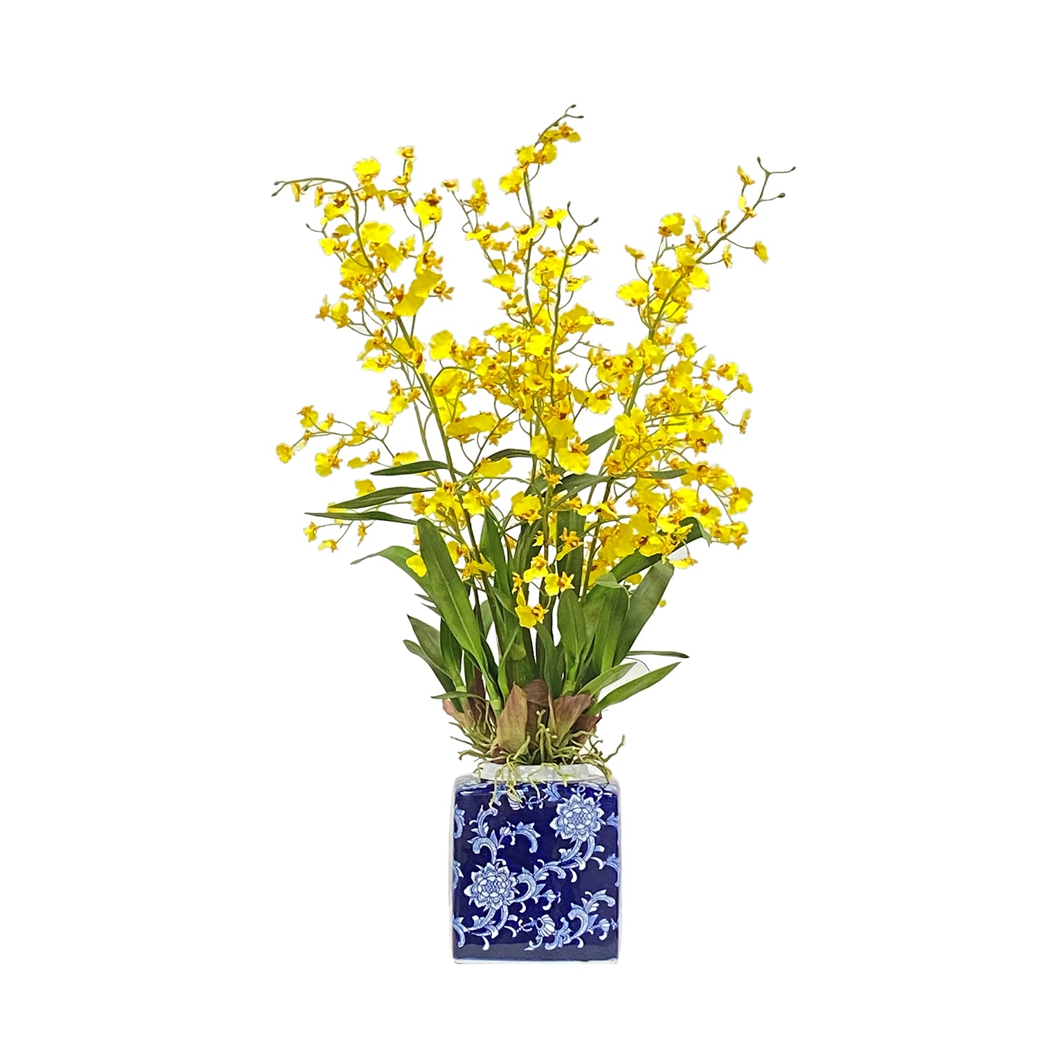 Faux Yellow Dancing Oncidium Orchid In Blue White Pot 31 Inches Tall Winward Home