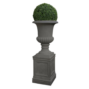 BOXWOOD BALL IN URN 5'