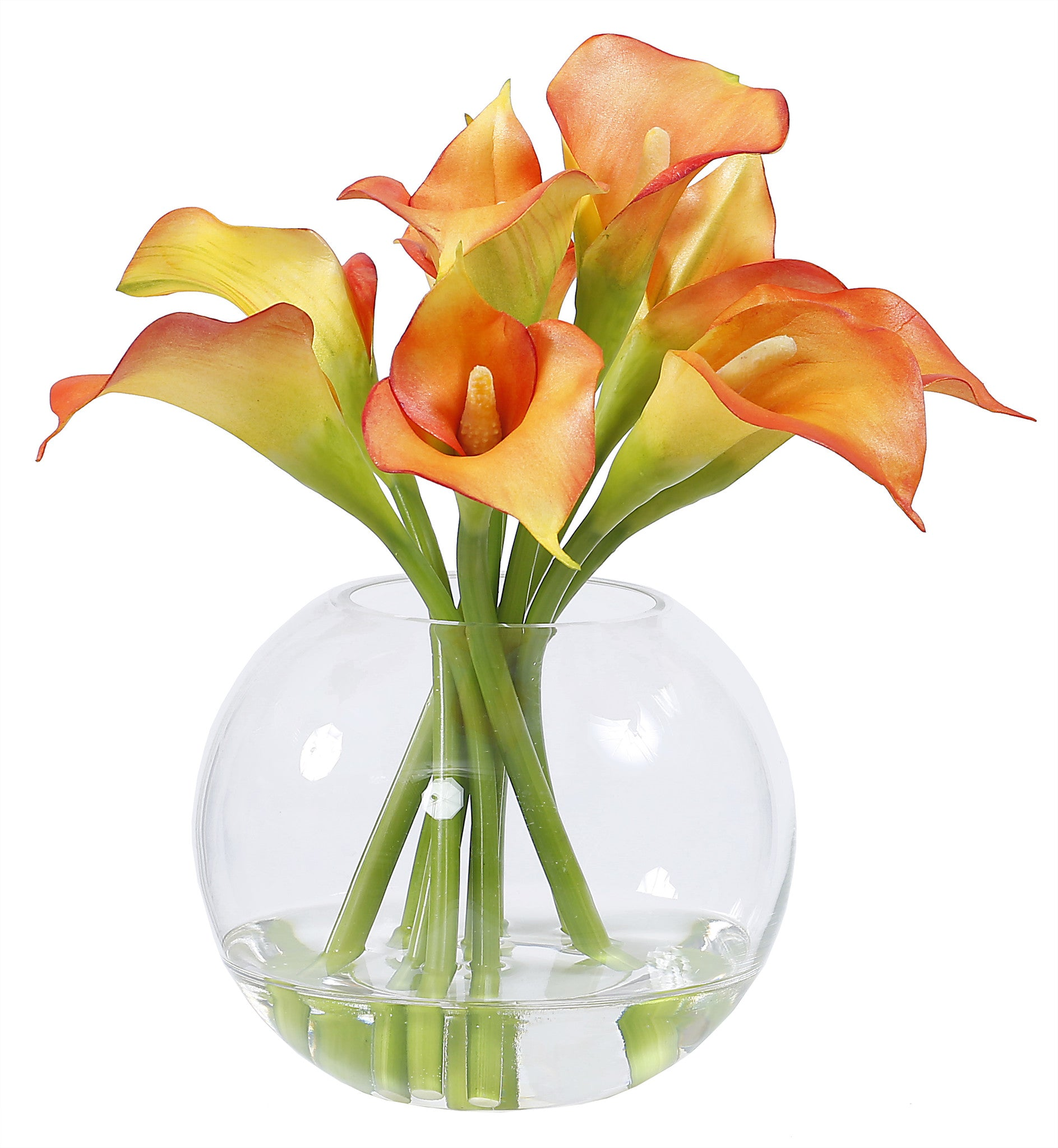 White hyacinth rectangle winward home finest permanent botanicals calla lily in glass 11 whi003 or winward home silk dhlflorist Images
