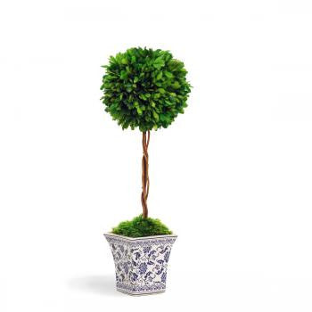 BOXWOOD BALL TOPIARY IN CACHE POT (WHPG3137-GR) - Winward Home faux floral arrangements