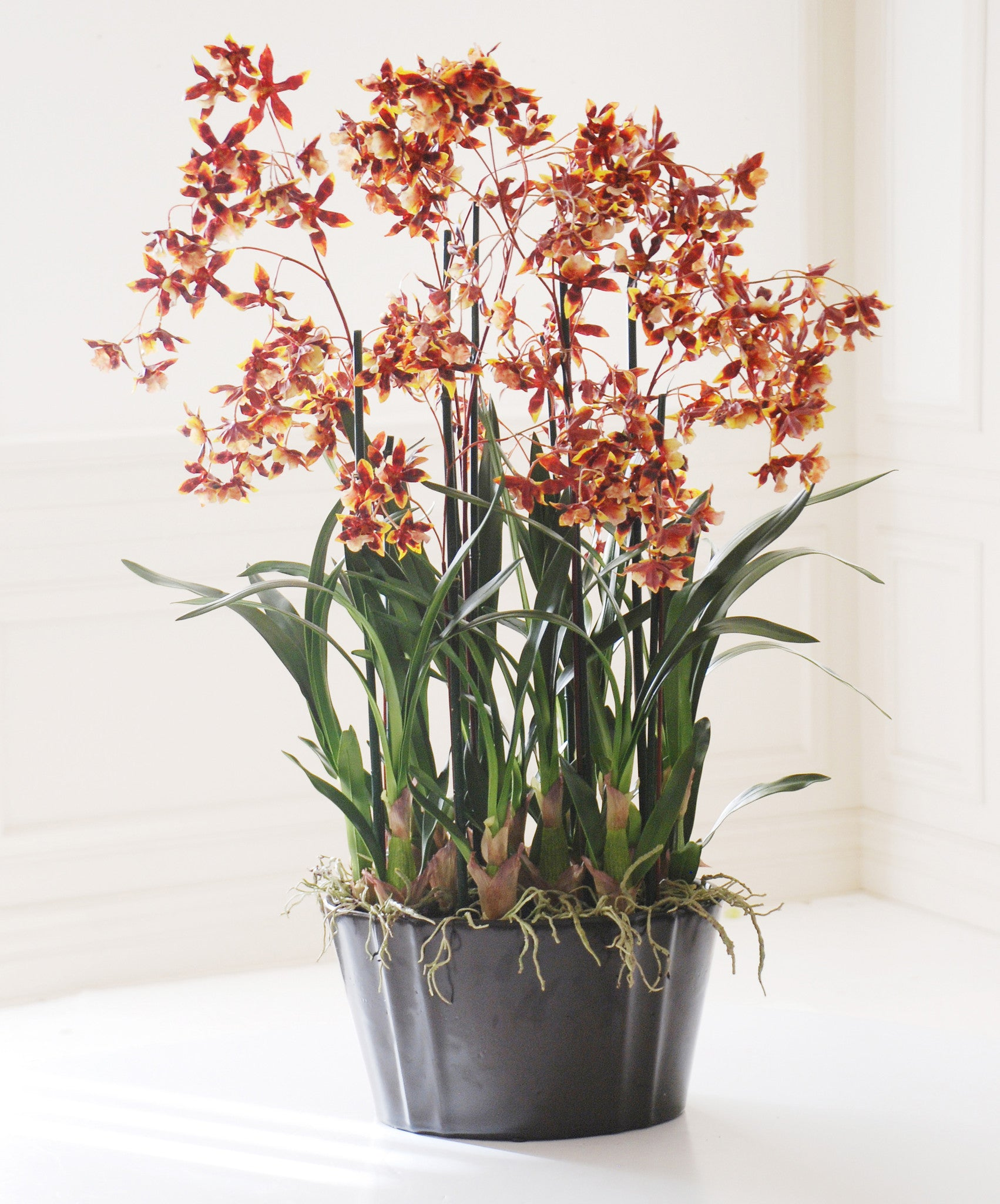 RED DANCING ONCIDIUM ORCHIDS (WHWWH109-BKRD) - Winward Home silk flower arrangements