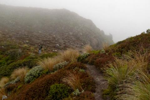 Photo of fog covered track at Tongariro National Park, New Zealand