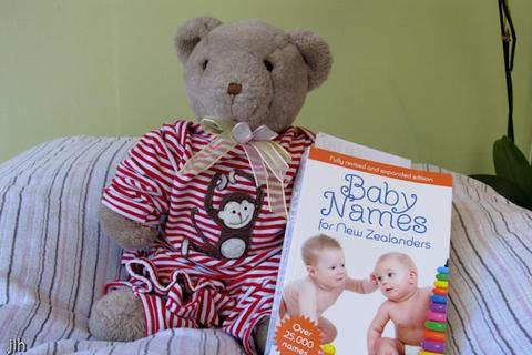 Image of Teddy bear with baby naming book
